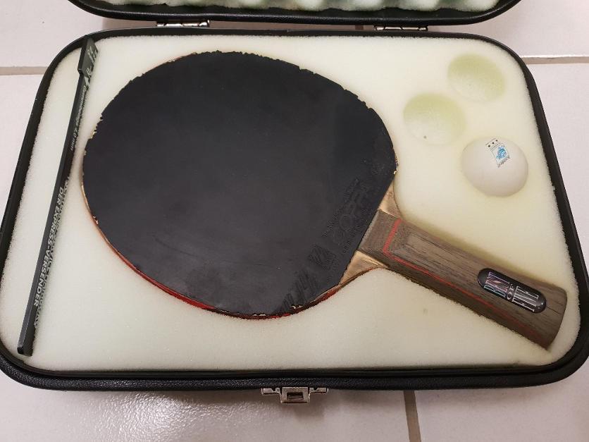 Holzversiegelung Tischtennis